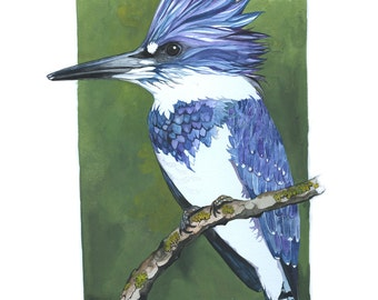ORIGINAL Watercolor Bird Painting / Male Belted Kingfisher