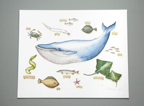The Whale and the Things He Ate - Print of Original Watercolor Illustration from Kipling's Just So Stories