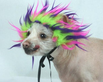 Wild Child Lime Faux Fur Dog Costume Wig Hat