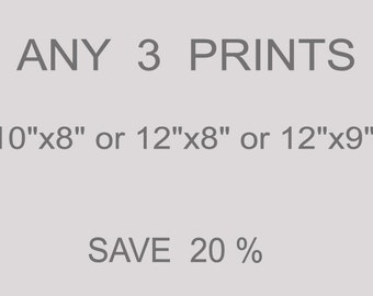 """ANY 3 PRINTS 10""""x8"""" or 12""""x8"""" or 12"""" x9"""" from an original watercolor paintings SAVE 20%"""