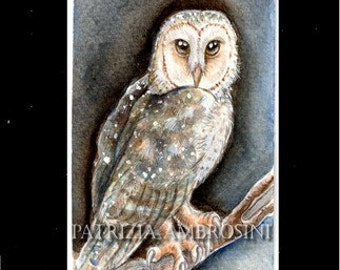 ACEO Original barn owl Collectible miniature handpainted....watercolour card