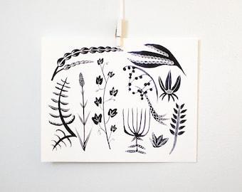 White + Black Botanicals, print