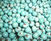 Acai Beads Turquoise Pack of 100