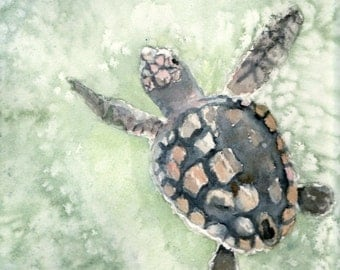 Nature art sea turtle watercolor print 8x10, choose matte color and finish (giclee matte or glossy)