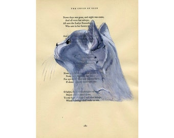 British Shorthair - Original Watercolor Painting - on Antique Book page - 8x11inches