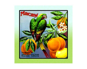 Small Journal - Macaw Brand Citrus - Fruit Crate Art Print Cover