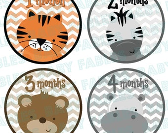 Monthly Baby Stickers Baby Month Stickers Baby Boy Month Stickers Monthly Photo Stickers Monthly Milestone Stickers Bodysuit Stickers