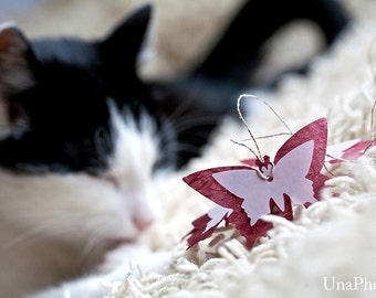 Butterfly gift tags - dark red with pink