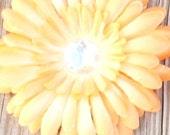 5 Orange Large Gerber Daisy Flowers 4 inch with 22 mm Rhinestone Center
