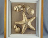 SALE Golden Sea Treasures in a Shadow Frame // Beach House // Beach Lovers // Beach Finds // Made Special //  3-D Effect  ***WAS 29.00
