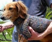 PDF Download Knitting Pattern - Lena's Cozy Brioche Miniature Dachshund Dog Sweater