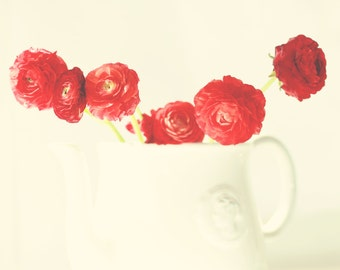 red decor flower photography ranunculus teapot / 8x10 or 16x20 Fine Art Photography / red white green flowers ranunculus