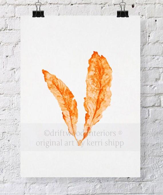 Sea Fan in Tangerine - NEW colour