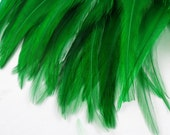 Green  Feathers Premium Strung Saddle green  PSD-1  6 inches plus craft feathers
