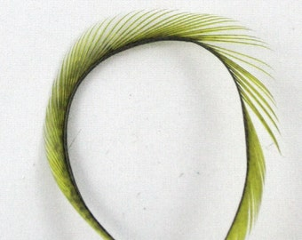 light olive Feathers Goose Biots GBD-42 craft feathers fly tying feathers