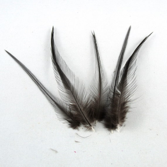 24 Natural black feathers 2 to 4 inches NBN-2 craft feathers