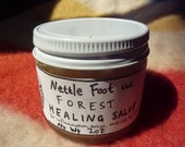 Forest Salve made with Devil's Club Root from old growth Washington forests