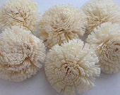 Sola Mum Flowers---  Set of 6 Mum Sola Flowers