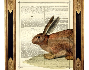 Rabbit Bunny Woodland Forest Easter - Vintage Victorian Book Page Art Print Steampunk