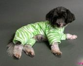 2 Leg Dog PJs - Lime Green Zebra Print Dog Pajamas