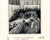 In the Sea Garden is an Octopus