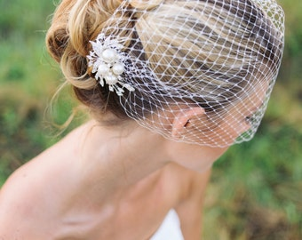 Veil and comb, bridal Birdcage veil with rhinestone comb- JOLEE (free shipping in usa), ivory birdcage veil, wedding veils