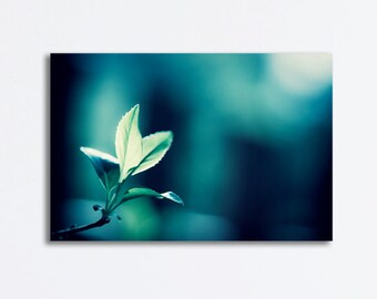 """Dark Teal Canvas - nature photography blue green turquoise canvas gallery wrap botanical navy print branches photograph, """"In the Moonlight"""""""