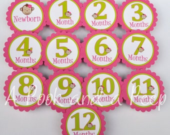 Lime Green and Pink Monkey 1st Year Photo tags First Birthday Photo Display Decoration