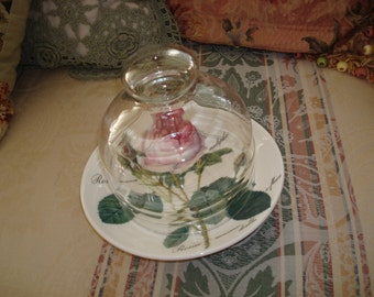 Glass cloche pink rose plate Pierre Joseph Redoute pink rose saucer shabby chic display small cloche and plate cottage vintage home decor