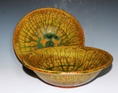 Terracotta bowl with rain forest green