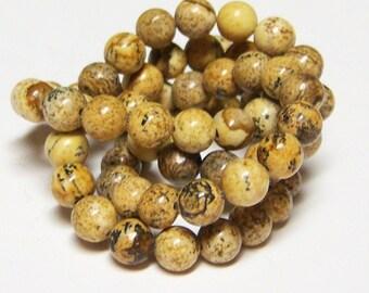 Natural Picture Jasper, One Full Strand, 6mm Round Beads