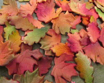 25 Edible Realistic Autumn & Oak Leaves Gumpaste Cupcake Toppers