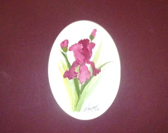 1/2 OFF     Small Burgandy Iris matted in Oval  Mat