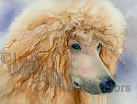 "Standard Poodle, Apricot, Cinamon, AKC Non Sporting, Pet Portrait Dog Art Watercolor Painting Print, Wall Art, Home Decor, ""Apricot Angel"""