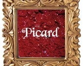 Picard 3g Pigmented Mineral Eye Shadow Jar with Sifter