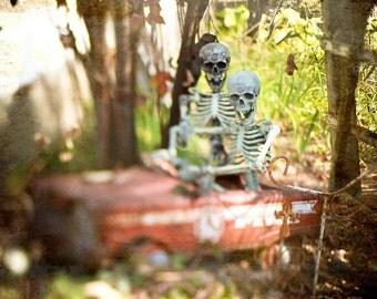 Halloween Skeletons Bones Spooky Scary Dark Photography Pumpkins Trick or Treat October Halloween Decor Haunted House, Fine Art Print