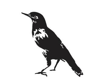 Myna Bird Decal Hawaiian Animal Vinyl Sticker - 560