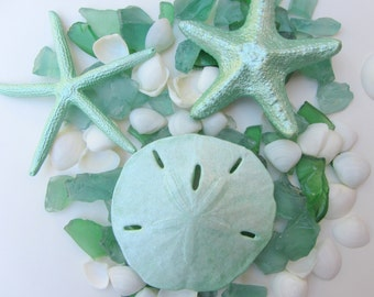 Beach Decor - Green Shell and Hand Tumbled Seaglass Mix - Nautical Decor