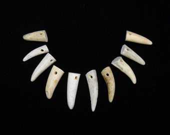 "Multipack 1-1.5"" DRILLED Antler Tips Real Deer Bone Taxidermy Pendant Necklace Jewelry Beads"