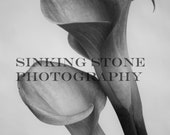 """Make any 5 photos 5"""" x 7"""" size. Custom wall decor. Use this to make the 5 photos you want 5"""" x 7""""."""