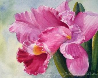Pink Orchid Painting Original Watercolor 4x6 Tropical Flower Art Janet Zeh