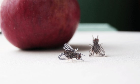 Fly Post Earrings, Insect, Bug, Entomology, House Fly, Wearable Art, Autumn, Halloween, Novelty, Unusual
