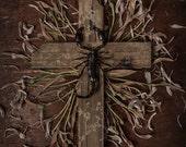 Scorpion Cross Print