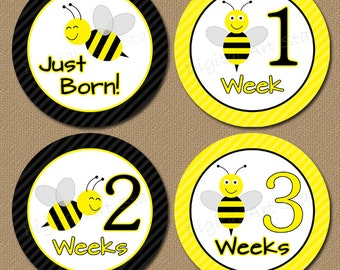 Printable Baby Month Stickers Iron On Transfers - Bumble Bee - Gender Neutral Milestone Stickers Baby Shower Gift - INSTANT DOWNLOAD