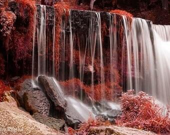 Surreal nature decor, red wall art, river in a forest, red forest, surreal nature photography, high quality print, Estonia