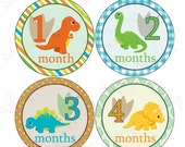 Neutral Monthly Baby Stickers, 1 to 12 Months, Monthly Bodysuit Stickers, Baby Age Stickers, Dinosaurs Neutral (026-1)