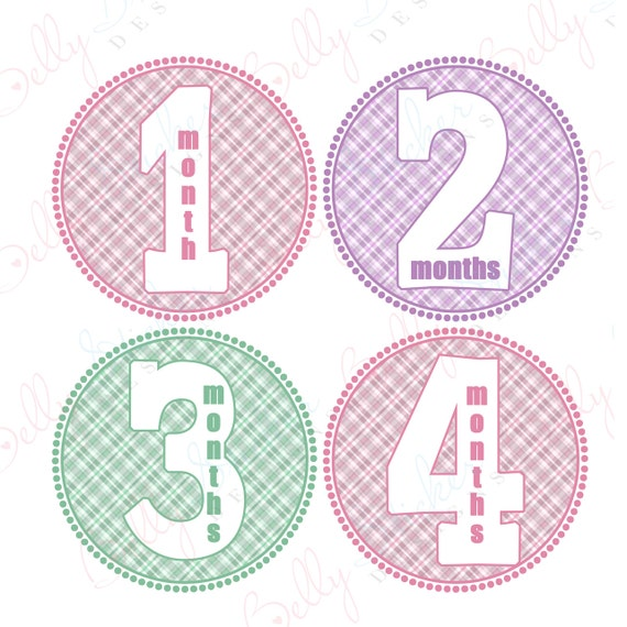 Girl Monthly Baby Stickers, 1 to 12 Months, Monthly Bodysuit Stickers, Baby Age Stickers, Pretty in Flannel  (003-2)