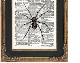 Spider Dictionary Page Art Print 8 x 10 - Altered Art Collage - Horror - Goth