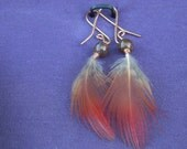 Small Feather Earrings with Gemstones