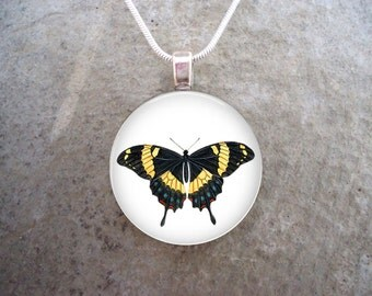 Butterfly Jewelry - Glass Pendant Necklace - Butterfly 5 - RETIRING 2017